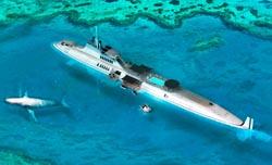 submarino migaloo